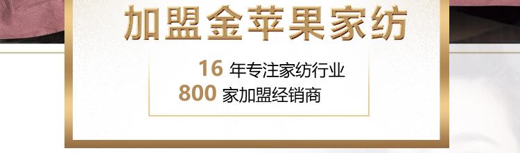加盟金苹果banner